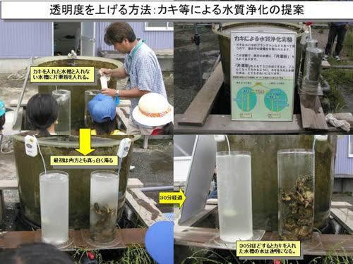 """【悲報】東京湾、水質浄化のために""""これ""""が投下されるwwwww(画像)のサムネイル画像"""