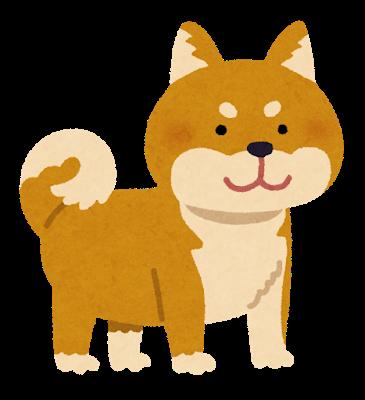 【戦慄】長野で飼われていた柴犬が逃げ出した結果…→とんでもないことに・・・・・のサムネイル画像