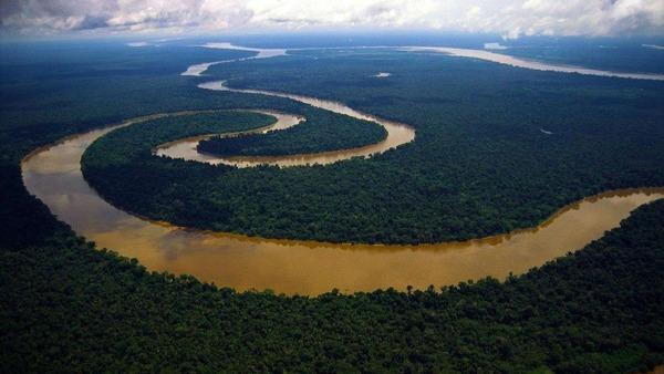 【画像】アマゾンの奥地で完全に文明と隔離した「先住民」が発見されるwwwwwwwwwwwwwwwwwのサムネイル画像