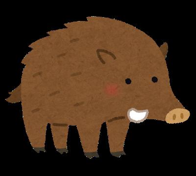 animal_inoshishi
