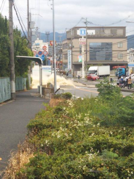 【動画】大阪、水道管破裂 → 住民「まるでウォーターワールド」→ 一方、スーパーでは・・・のサムネイル画像