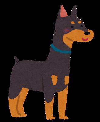 【悲報】逃走した兵庫の警察犬、とんでもない状態で発見される・・・・・・