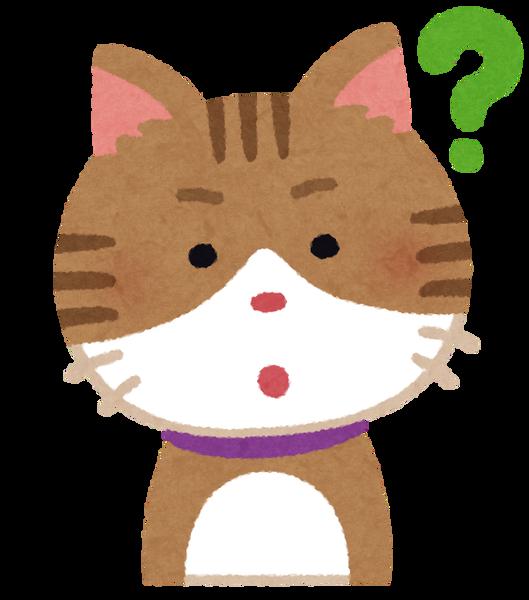 cat3_1_question