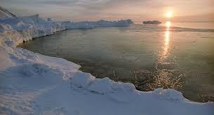 【画像】ロシアの海岸に正体不明の生物の死体が打ち上がる!!!→ かなりの大きさな模様・・・・・のサムネイル画像