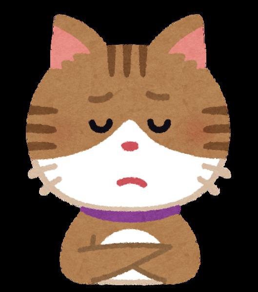 【埼玉】中1男子「猫を飼っていて避難できない!!!」→結果・・・・・のサムネイル画像