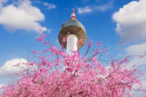 "【驚愕】韓国「GW、日本人の""人気旅行先""1位がコチラwwwwwwwwwwwwwwwwwwwww」のサムネイル画像"