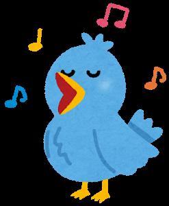 tori_saeduri_sing_blue