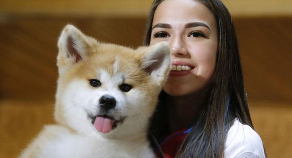 【動画】ザギトワの愛犬「マサル」CM出演!!!→ スターになるwwwwwwwwwwwwwwwwのサムネイル画像