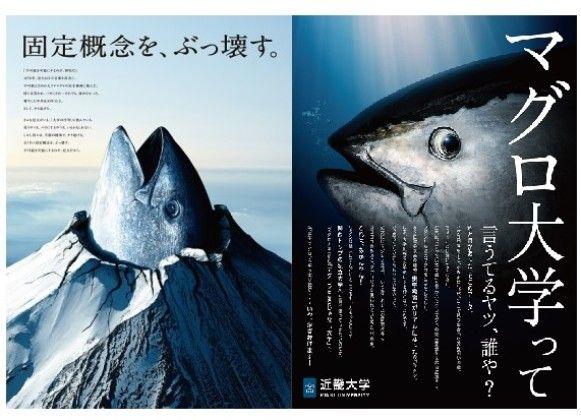 【台風21号】近畿大学の施設が被災!!!→「近大マグロ」がとんでもないことに・・・・・のサムネイル画像