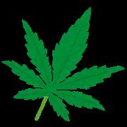 【あっ…】大麻陽性反応の東京五輪金メダル有力候補、おかしなことになってるwwwwwwwwwwwwwwwのサムネイル画像