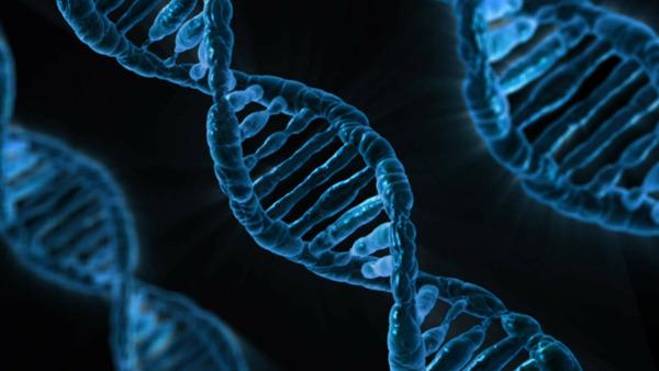 """【ヒエッ…】韓国人全員の""""DNA""""がヤバいwwwwwwwwwwwwwwwwwwwwwwwwwwのサムネイル画像"""