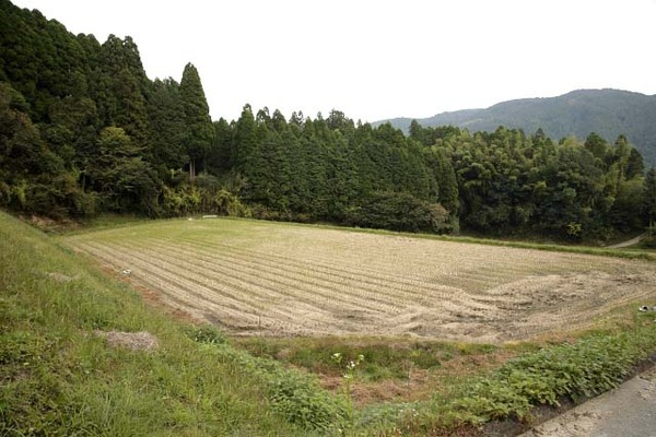 【衝撃】九州北部の遺跡で大発見!!!歴史が変わる可能性!!!!!のサムネイル画像