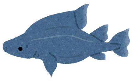 fish_oroshizame