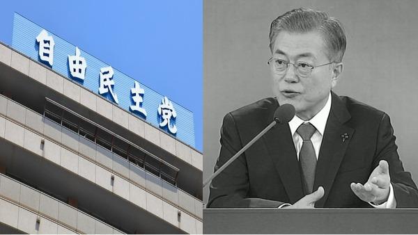 【衝撃】自民党議員、「韓国人の入国規制」を提案!!!→ その内容が・・・・・のサムネイル画像