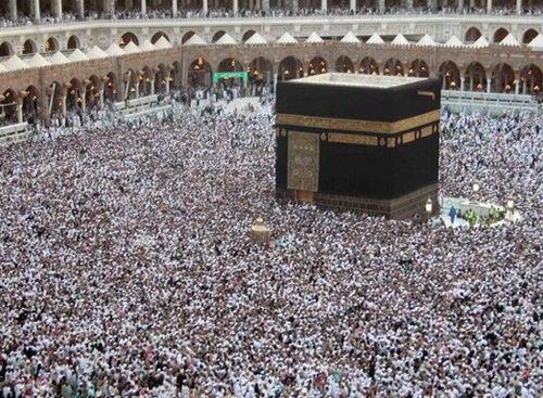 【驚愕】イスラム系移民の65%、とんでもない事実が判明wwwwwwwwwwwwwwwwwwwwのサムネイル画像