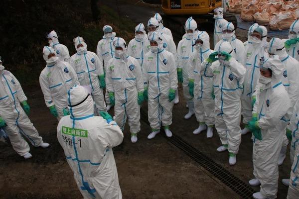 【戦慄】豚コレラで殺処分の支援に自衛隊が出動→ コレはメンタルやられるわ・・・・・のサムネイル画像