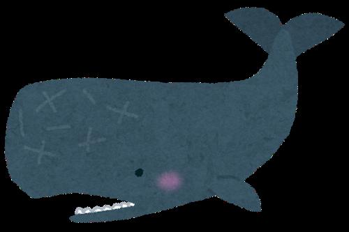 【衝撃】クジラ肉、法改正でこうなるwwwwwのサムネイル画像