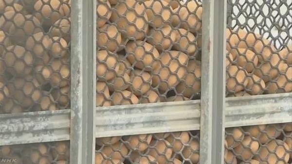 【画像】工場で輸入ジャガイモの中から手榴弾を発見wwwwwwwwwwwwwwwwwwwwwwのサムネイル画像