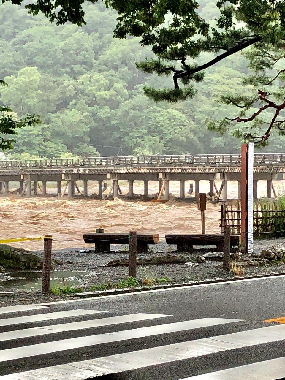 【速報】関西の川、軒並みダメそう・・・これもう手遅れだろのサムネイル画像