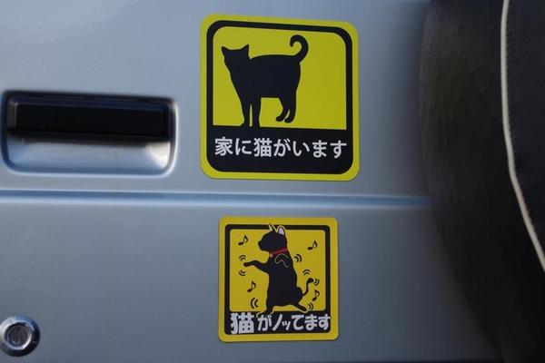 【驚愕】車に謎の「家に猫がいます」ステッカー!!!→ その意味がwwwwwwwwwwwwwwwwwwwのサムネイル画像