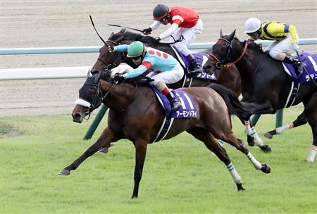 【動画】競馬・秋華賞、圧巻の「三冠」牝馬が誕生wwwwwwwwwwwwwwwwwwwwのサムネイル画像