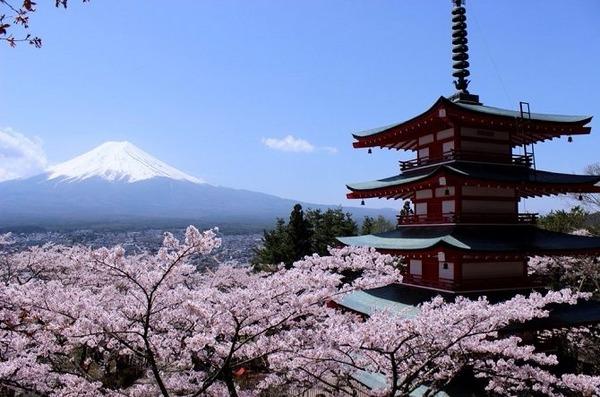 【悲報】日本の現状を表した画像が話題にwwwwwwwwwwwwwwwwwwwwwwのサムネイル画像