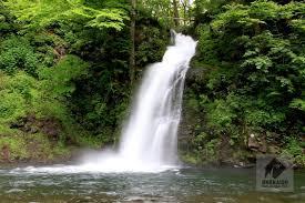 【朗報】美女5人、川に流された男性を勇敢に救助へ!!!!!(画像あり)のサムネイル画像