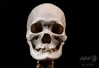 【衝撃】ダーウィンの進化論、ウソだった模様wwwwwwwwwwwwwwwwwwwwのサムネイル画像
