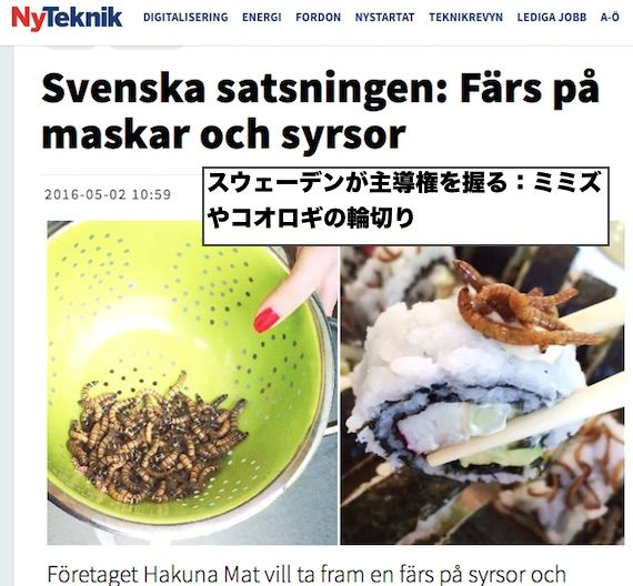 sweden-eat-insect