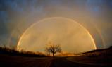 rainbow0