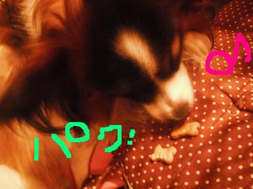 blogfree25 043