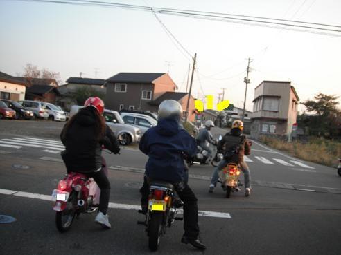 アニ 熊 176