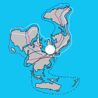 北極中心 渡り鳥ルート