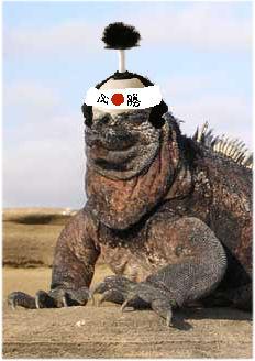 日本ガラパゴス化