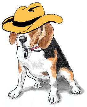 Momo in Cowboy Hat