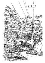 170623_下小山田の谷