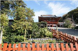 鶴ヶ丘八幡宮