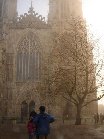York 6