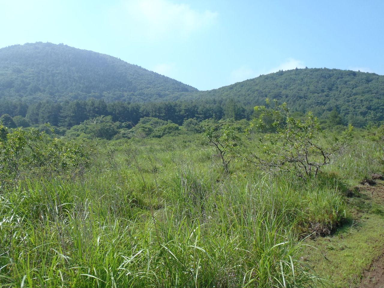 山梨・山の会  富士山麓探索 野尻草原と列状火口 8月2日 晴れコメントトラックバック                eyama