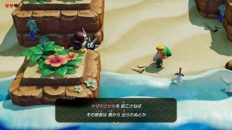 ゼルダの伝説 夢をみる島 フクロウ