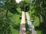陸橋から見たサイクリングロード