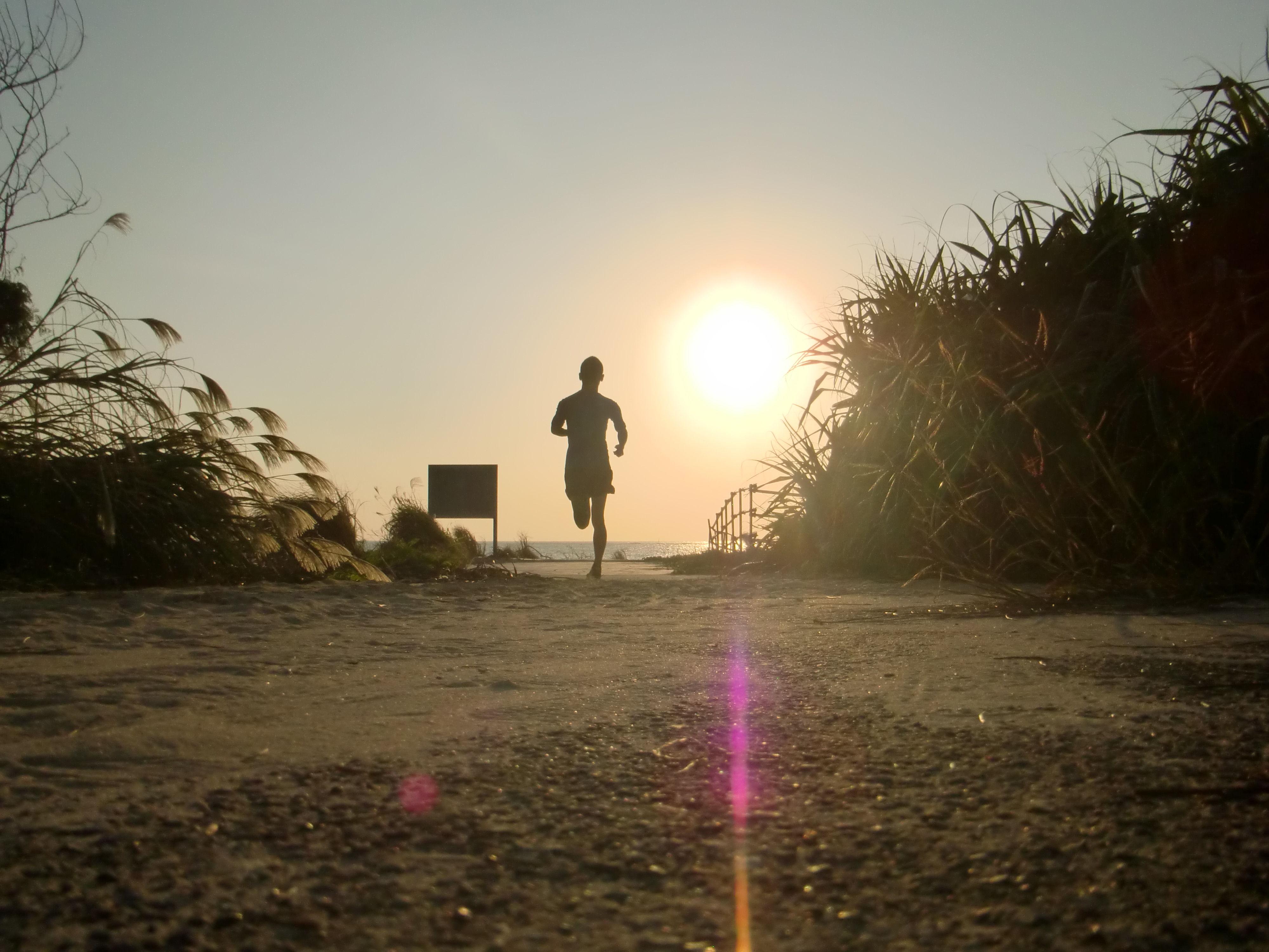 「ランナー 夕日」の画像検索結果
