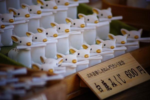 奈良公園026