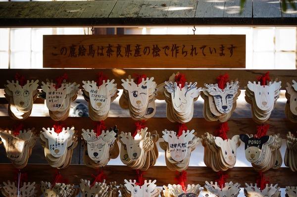 奈良公園027