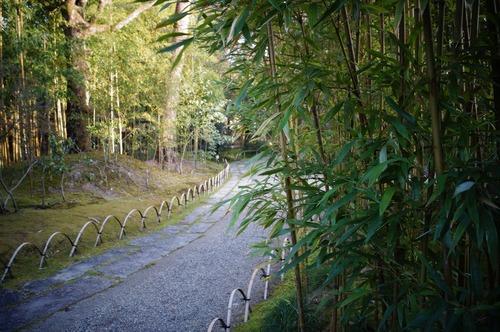 松花堂庭園055