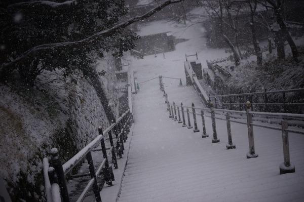 雪の京都020