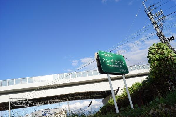 大山崎009