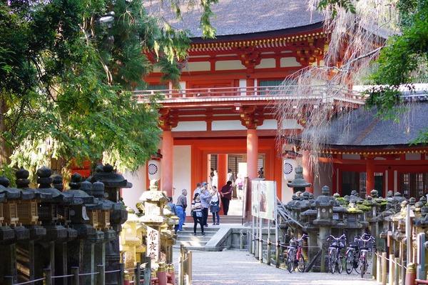 奈良公園025