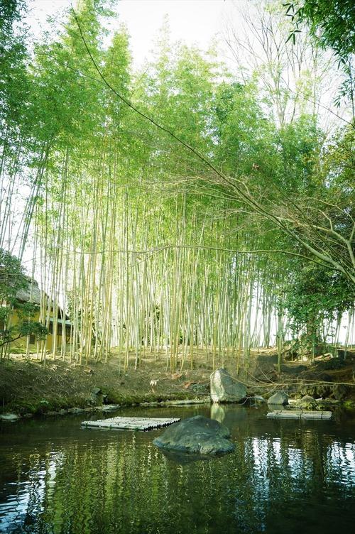 松花堂庭園023