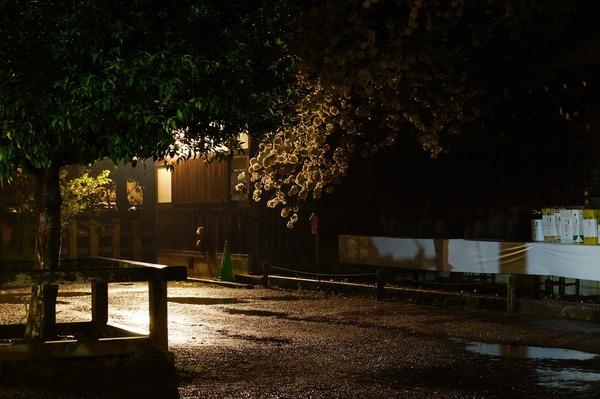 平野神社007